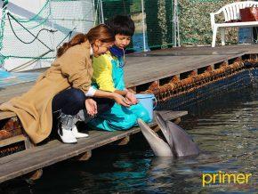JAPAN TRAVEL: Sea Donut Aquarium in Amakusa
