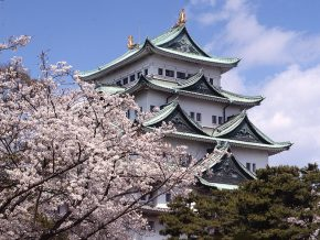 JAPAN TRAVEL: A Walk-Through to Nagoya Castle and Hommaru Palace's History