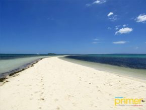 Virgin Island in Panglao is One of Bohol's Most Picturesque Views