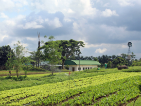 Gourmet Farms in Silang Cavite: A Destination for Coffee and Nature Lovers
