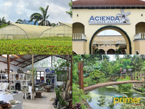 7 Family-Friendly Spots to Check out in Silang Cavite