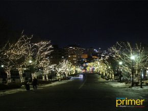 Hakodate Illumination in Hokkaido: The Sloping Streets of Glittering Lights